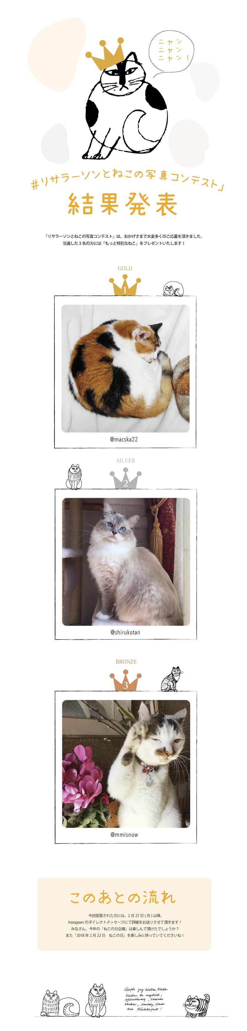 catcontest.jpg