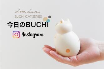 今日はどんなねこ?「今日のBUCHI」をインスタグラムでお届け!