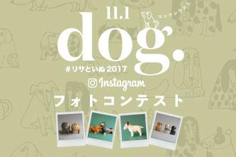 \\リサ・ラーソン犬の写真コンテスト//